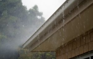 Gutters and Roof Maintenance
